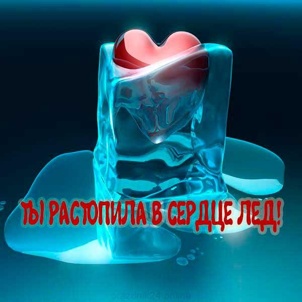 картинка ты растопила в сердце лед