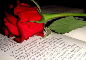 роза на книге со стихами