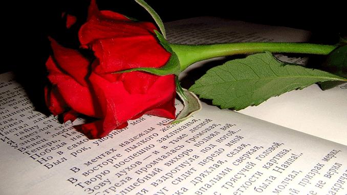 красивые стихи любимой женщине