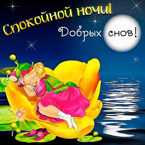 спокойной ночи добрых снов