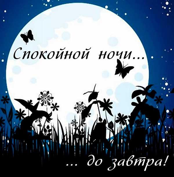 прикольные картинки спокойной ночи