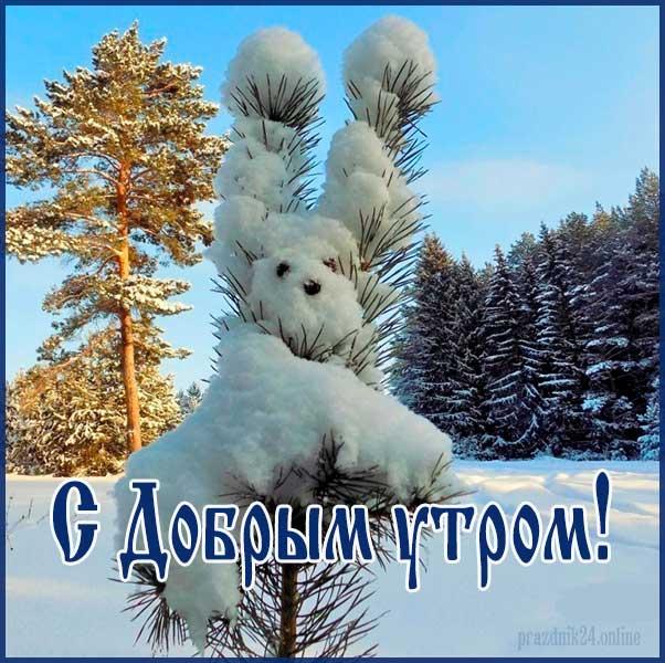 Доброго зимнего утра