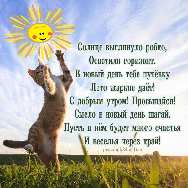 прекрасного летнего утра