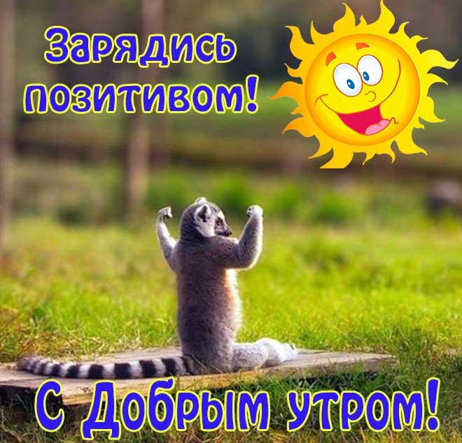 картинки с пожеланием доброго утра и здоровья